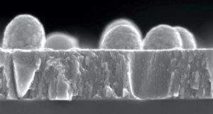 Pracownik Badawczo-Techniczny w pracowni mikroskopii elektronowej