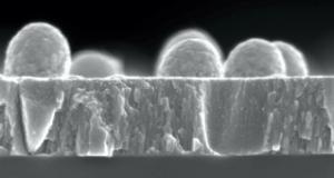 Open position for electron microscopy technician