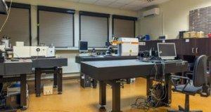 Doktorant w projekcie First Team (asystent INTiBS PAN)